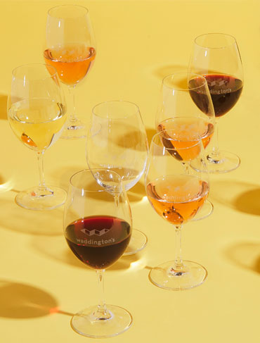 A Master Class: Choosing the Right Wine Glass